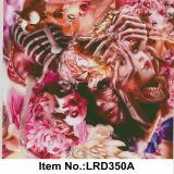 Numéro en bois Lrd349A de configuration de film d'impression de transfert de l'eau du best-seller
