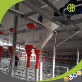 많은 돼지 농장에 의하여 아주 대중적인 돼지 송곳 자동 공급 시스템