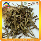 Té Herbal Tea Aloe rebanadas sano secado