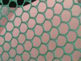 Nuova rete di plastica piana sporta di 100%