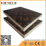 madera contrachapada de Sr. Glue Brown Film Faced de 18m m para Singapur