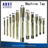 Golpecitos de la máquina de DIN376 HSS Co5 con las flautas rectas