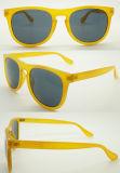 نمط جديدة حارّ يبيع نظّارات شمس بلاستيكيّة ([وسب504168])