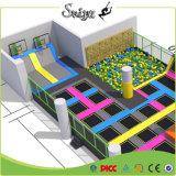 Park van de Trampoline van de geschiktheid het Binnen met het Beklimmen van Stuk speelgoed voor Kinderen