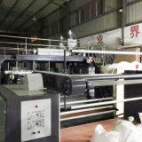 Pearl Film Compound Air Bubble Film Making Machine