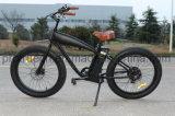 脂肪質のタイヤ電気山の電気自転車