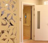 Ascenseur résidentiel de levage de maison de villa avec la cabine de qualité