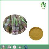 7.5%~25% Extracto natural puro de la petasita de Petasins, 4:1 ~20: 1