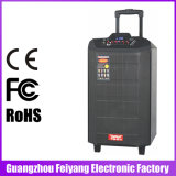 Haut-parleur rechargeable portatif de Bluetooth de grand pouvoir de Feiyang/Temeisheng--Qx-1215