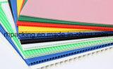 最もよい価格の再生利用できるポリプロピレンのTwinshieldの標準ボード(黒かTRANS) 2-10mm 2400*1200mm 2000*1000mm