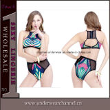 Sexy Summer Halterneck Fashion Swimsuit Lady Bikini (T41308)