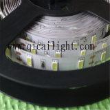 Fornitore Samsung della Cina/indicatore luminoso striscia di Epistar 5630 LED