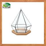 Glas-u. geometrischer saftiger Pflanzenbambuspotentiometer