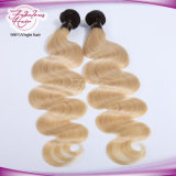 Spitzenton-blonde Farben-Menschenhaar-Jungfrau blondes Ombre Haar des SCHWARZ-zwei