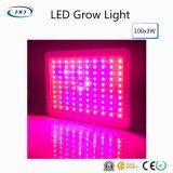 高品質3W*100PCS LEDはハーブ及び医学のプラントのために軽く育つ