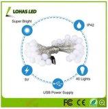 luz de la Navidad estrellada de hadas blanca caliente al aire libre impermeable de la luz de la cadena del USB LED de los 5m/16FT con 2.5W