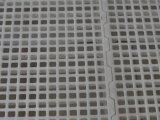 Vloer van het Latje van het Gebruik van het Huis van het gevogelte de Maagdelijke Materiële Plastic