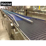 Nastro trasportatore di plastica di Hairise Modulare per la bevanda industriale con l'iso