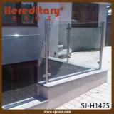De Balustrade van het Glas van het roestvrij staal voor het Traliewerk van het Balkon/van het Glas (sj-H1358)