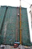 Élévateur de levage évalué de grue de construction de capacité de charge d'installation