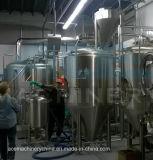 strumentazione della birra dell'acciaio inossidabile 300L con una fabbrica di birra delle due imbarcazioni (ACE-FJG-E6)