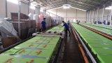 Manuafacture mais novo que fornece Spt Automatic Slipper / PU Leather / T Shirt / EVA / Bag / Shoes Máquina de impressão de tela superior / tela