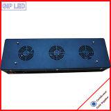 Bonne qualité 126W Puces Epileds COB croître lumière LED 504W
