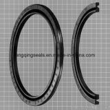 Selo pneumático do pistão do selo de Pz