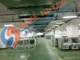 Sistema de Inspección de seguridad, el escáner de rayos X, la carga y Escáner de Paquetería DV6550SA