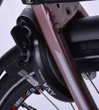 منتصفة محرّك درّاجة مع [ليثيوم بتّري] صاحب مصنع ومموّن