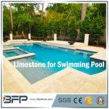 De geslepen Beige Natuurlijke Tegel van het Kalksteen voor Binnen Zwembad die/het Bedekken van de Pool het hoofd bieden