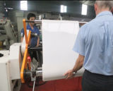 Extrudeuse en plastique à une seule couche fournisseuse de machine de PP/PS