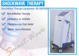 BS-Swt6000 de Verticale Musculoskeletal Behandeling van de Apparatuur van de Fysiotherapie van de Machine van de Schokgolf