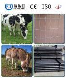 Galvanisierung-Vieh-Pferden-Rotwild-Zaun-/Bauernhof-Bereich-Zaun