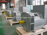 Знаменитые заводской поставки чистой меди 200Ква/ 160квт генераторы переменного тока (JDG Sfr274H)