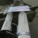 Speciaal 304 Ss van de Pijp van het Roestvrij staal Haarvat