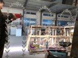 1.8mm 2mm 3mm Bloem Afgedrukte Spiegel met ISO, CCC