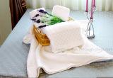 ホテルタオル、100%年の綿16s/1、21s/2、32s/1の平野、ジャカード、ドビーのボーダー、刺繍