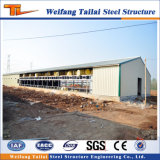Las aves de corral de la estructura de acero contienen para el edificio de la construcción