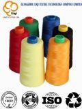 고품질 100%년 폴리에스테 다채로운 자수 직물 꿰매는 스레드