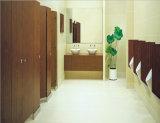 Com um design moderno WC Público Partição do compartimento compacto