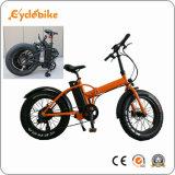 20 polegadas 750W gordura dobra dos pneus de bicicletas eléctricas