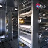 보일러를 위한 직업적인 강철 구조물 가금 농장 또는 중국에 있는 가득 차있는 암탉 감금소 설비 제조업자를 가진 층 닭장