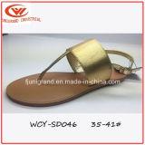 Un style simple femmes Slipper Summer Fashion sandales pour dame