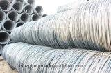 De Fabrikant SAE 1006 van China de Warmgewalste Staaf van de Draad van het Staal in Rollen voor het Maken van Spijkers