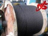 Corde d'or 6X36ws+Iwrc de fil d'acier de couleur