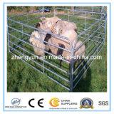 5ftx10FT гальванизированная стальная панель ярда овец 6rails/панель ярда козочки