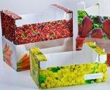 재상할 수 있는 폴리프로필렌 플라스틱 과일 상자