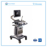 Trolley Color Doppler Ultrasound Machine with 4D Sonogram