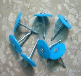 Chiodi di plastica della protezione